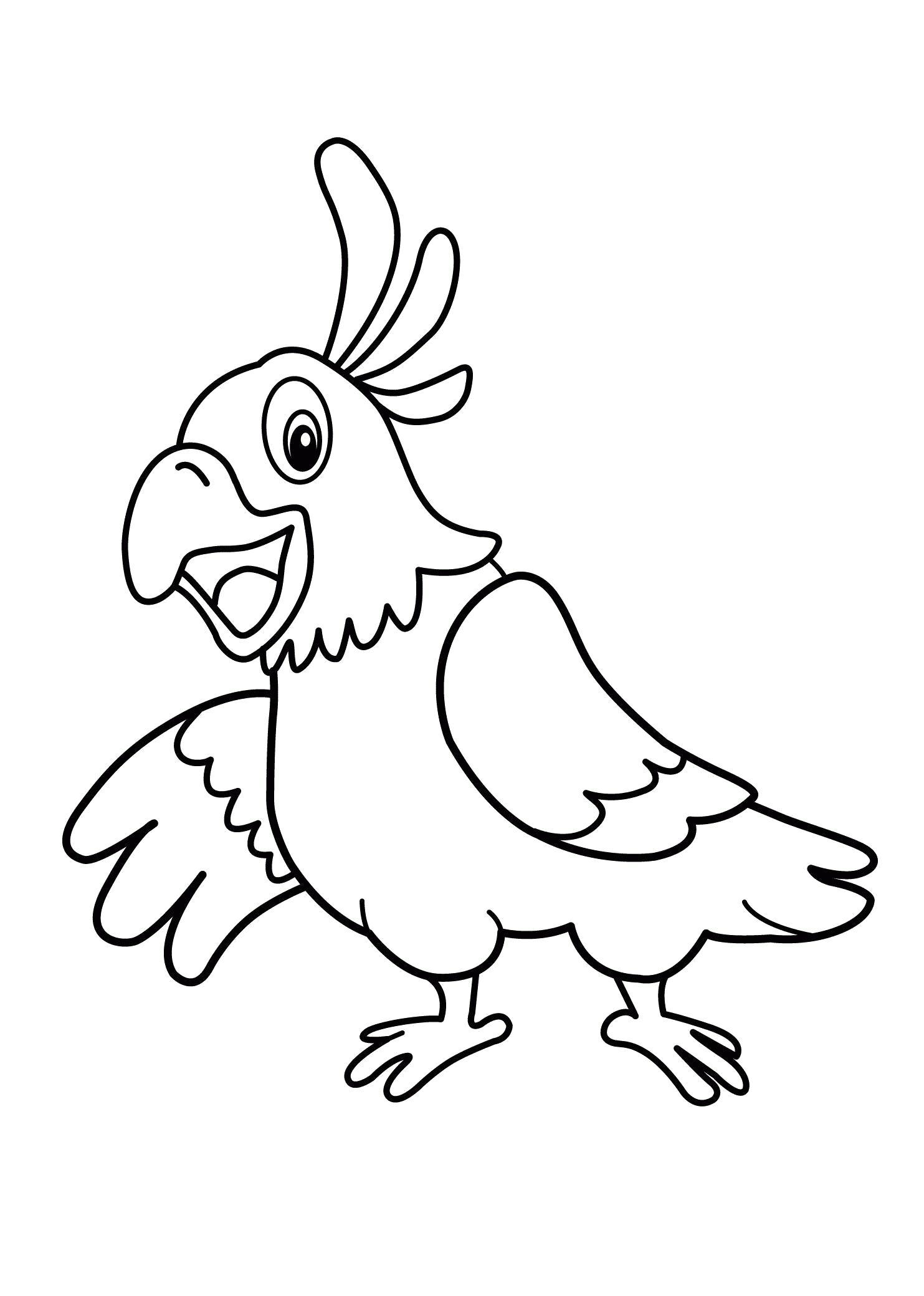 Раскраска  попугай. Скачать Птицы.  Распечатать Птицы