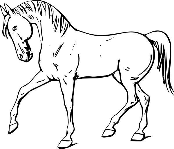 Раскраска Конь с фермы. Скачать .  Распечатать