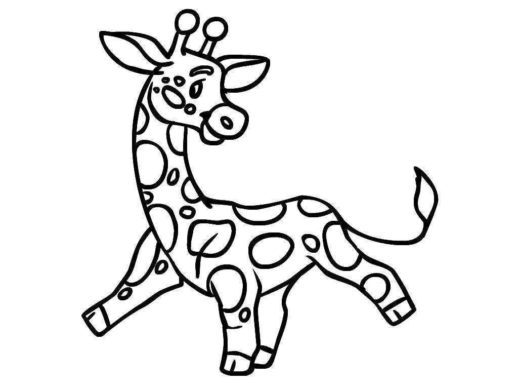 Раскраска Жирафик танцует. Скачать жираф.  Распечатать Дикие животные