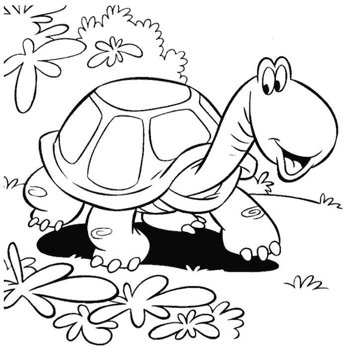 Раскраска черепаха разглядывает траву. Скачать Черепаха.  Распечатать Дикие животные