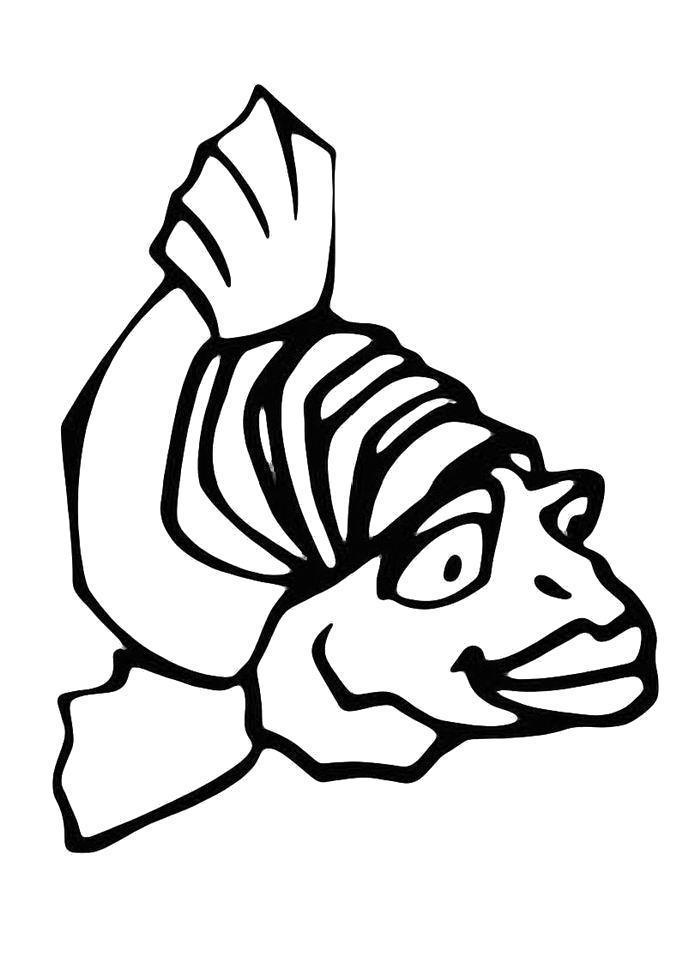 Раскраска Удивленная рыбка. Скачать .  Распечатать