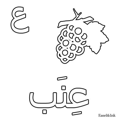 Раскраска Виноград. Скачать Арабский алфавит.  Распечатать Арабский алфавит