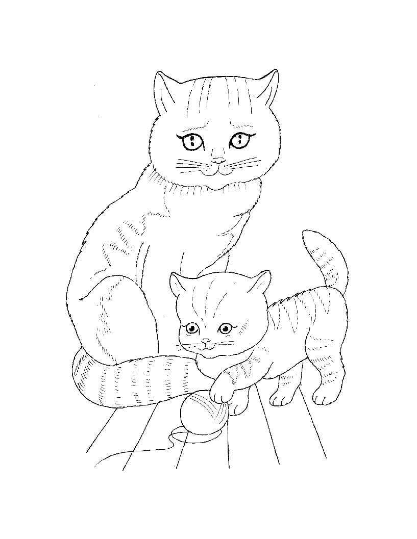 Раскраска  для самых маленьких  Домашние животные. Кошка с котенком который играется с клубком. Скачать кошка, Котенок.  Распечатать Домашние животные