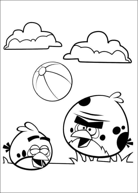 Раскраска angry birds играют в мяч. Скачать .  Распечатать