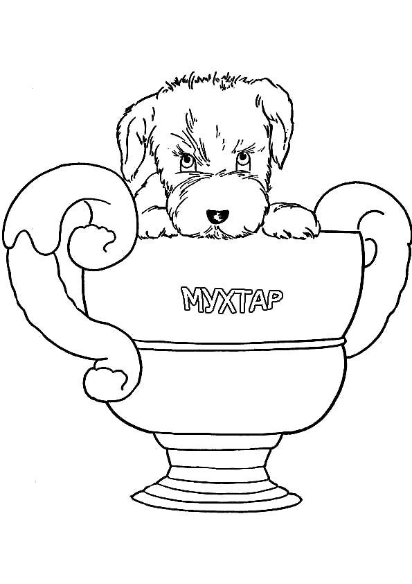 Раскраска Призовой щенок. Скачать Собаки.  Распечатать Собаки