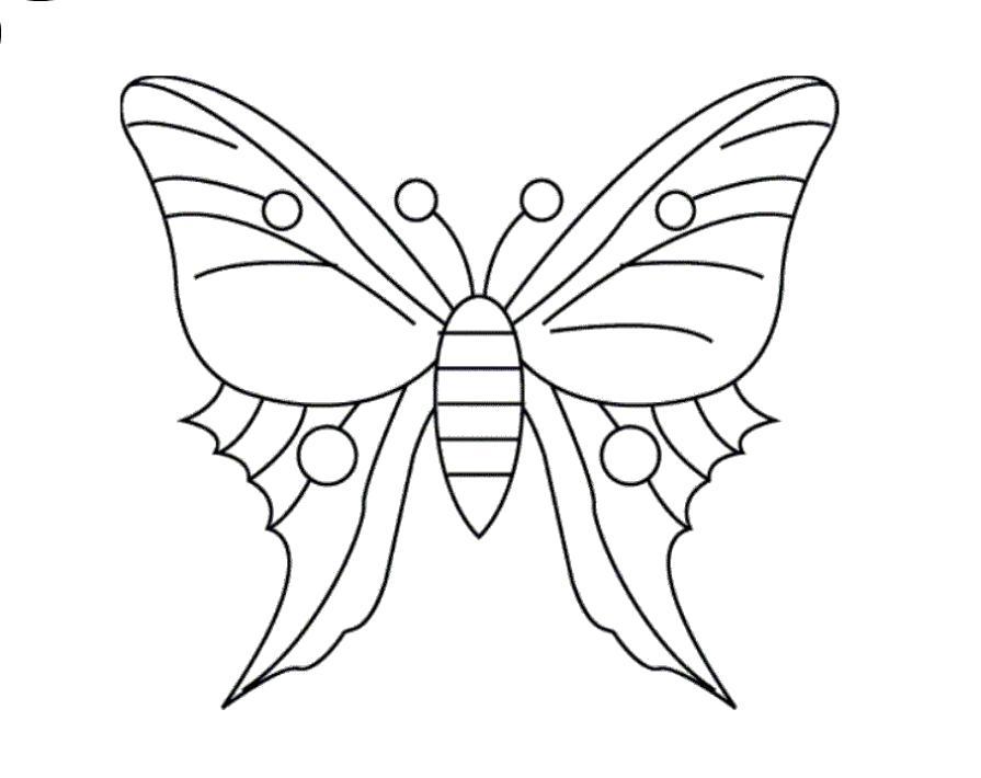 Раскраска Волшебная бабочка. Скачать бабочка.  Распечатать бабочка