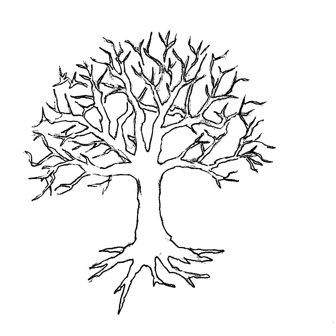 Раскраска  деревья аппликация дерево без листьев. Скачать дерево.  Распечатать растения