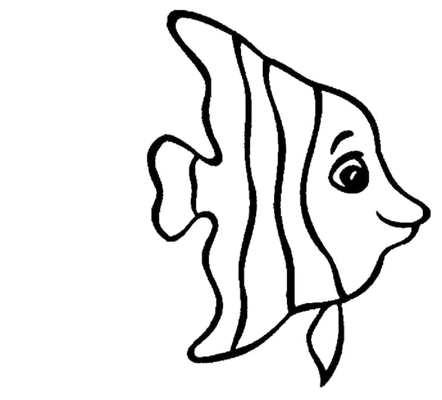 Раскраска золотая рыбка - картинки для . Морская рыба полосатая.. Скачать рыба.  Распечатать Рыбы