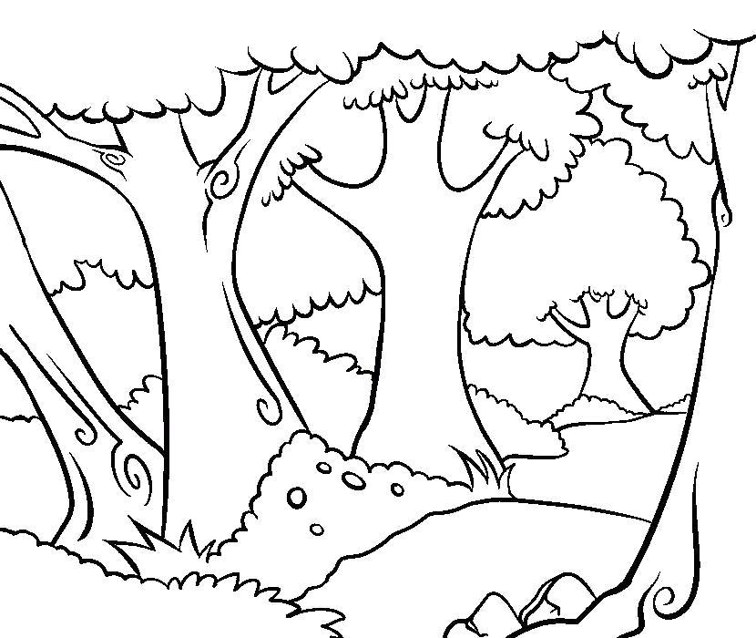 Раскраска Деревья в лесу. Скачать деревья.  Распечатать деревья