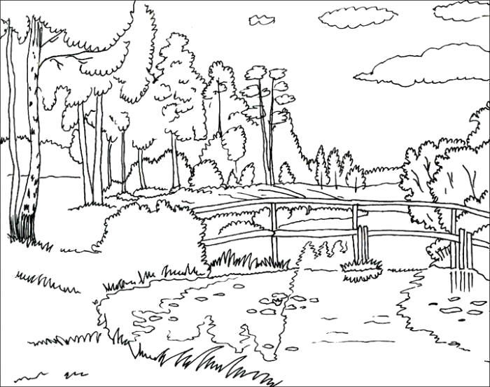 Раскраска  лето  лето пейзаж березы речка мостик . Скачать Лето.  Распечатать Времена года