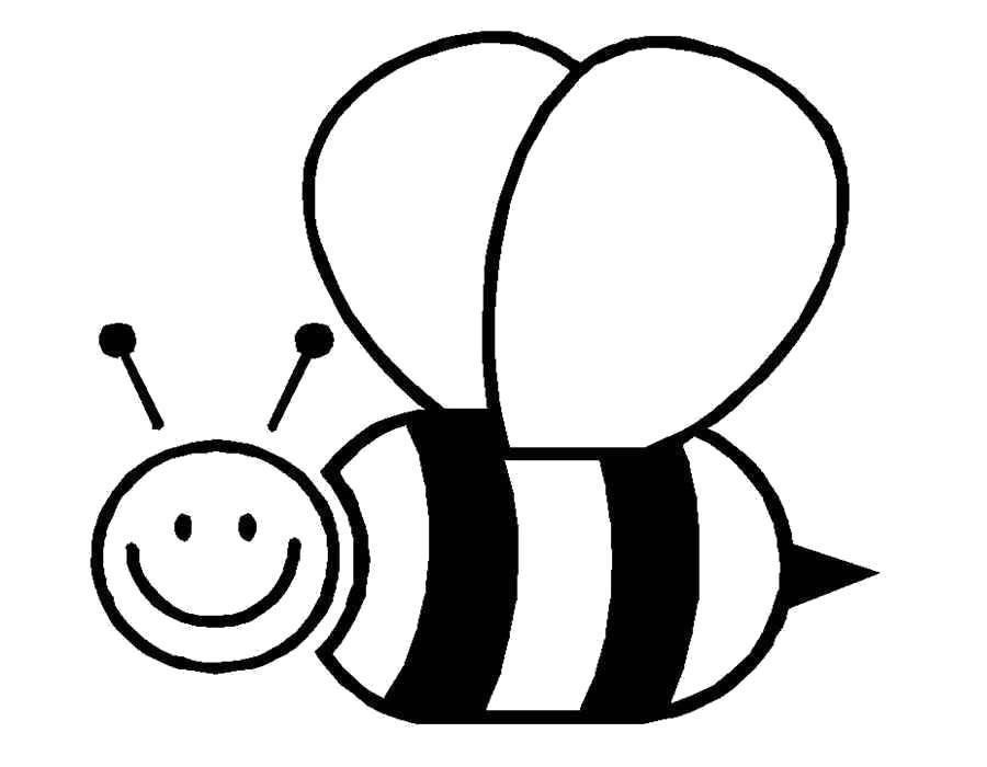Раскраска Счастливая пчелка. Скачать .  Распечатать