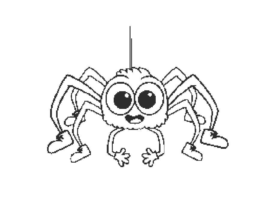 Раскраска  паук на паутине. Скачать Паук.  Распечатать Паук