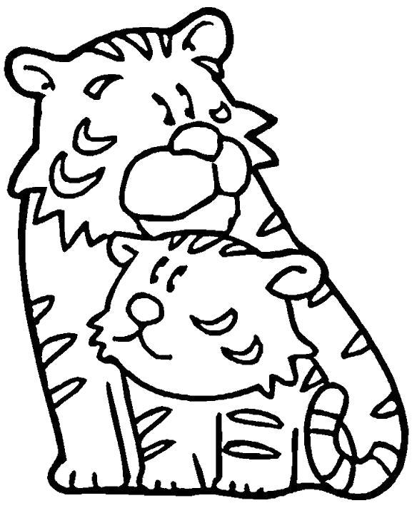 Раскраска Тигрята. Скачать Тигр.  Распечатать Дикие животные