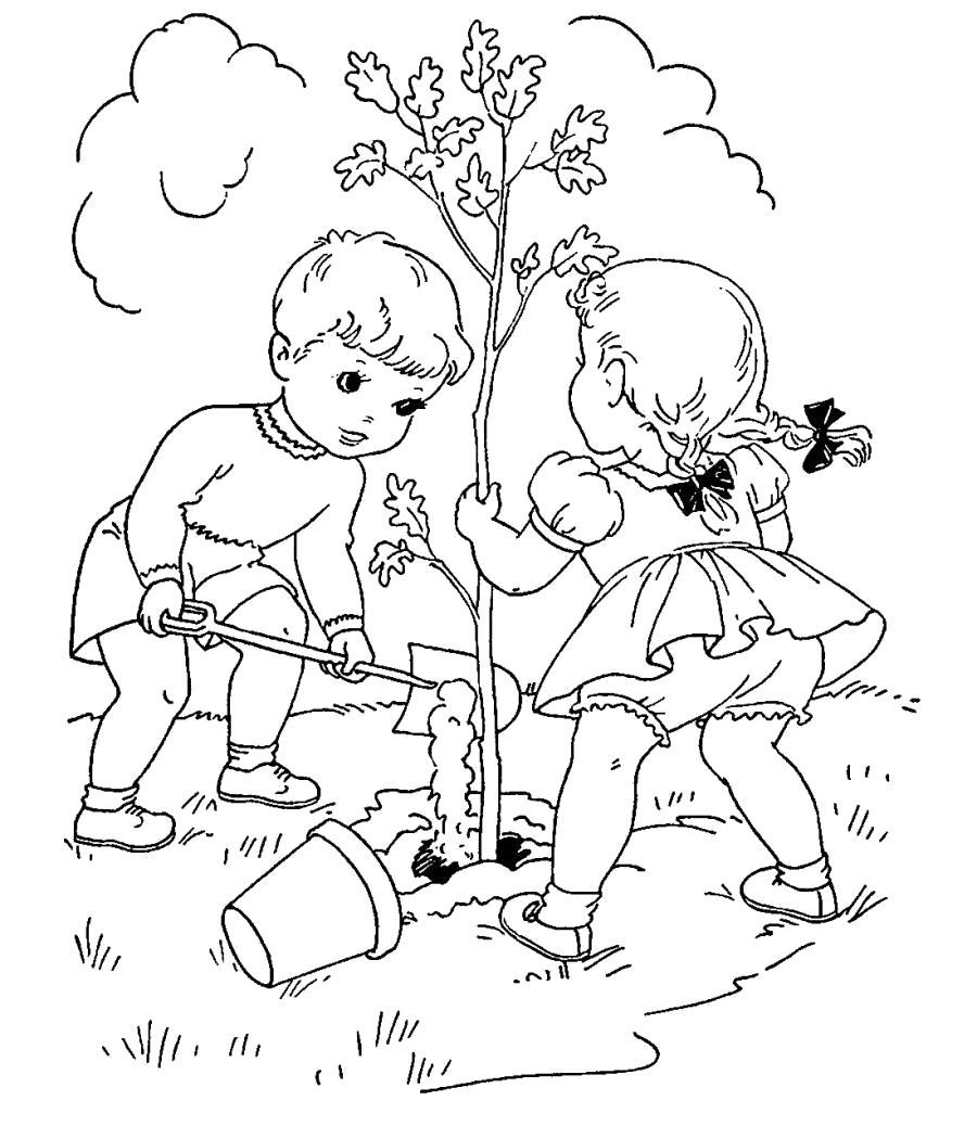 Раскраска Дети садят дерево. Скачать дерево.  Распечатать дерево