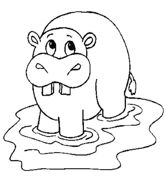 Раскраска бегемотик купается. Скачать бегемот.  Распечатать Дикие животные
