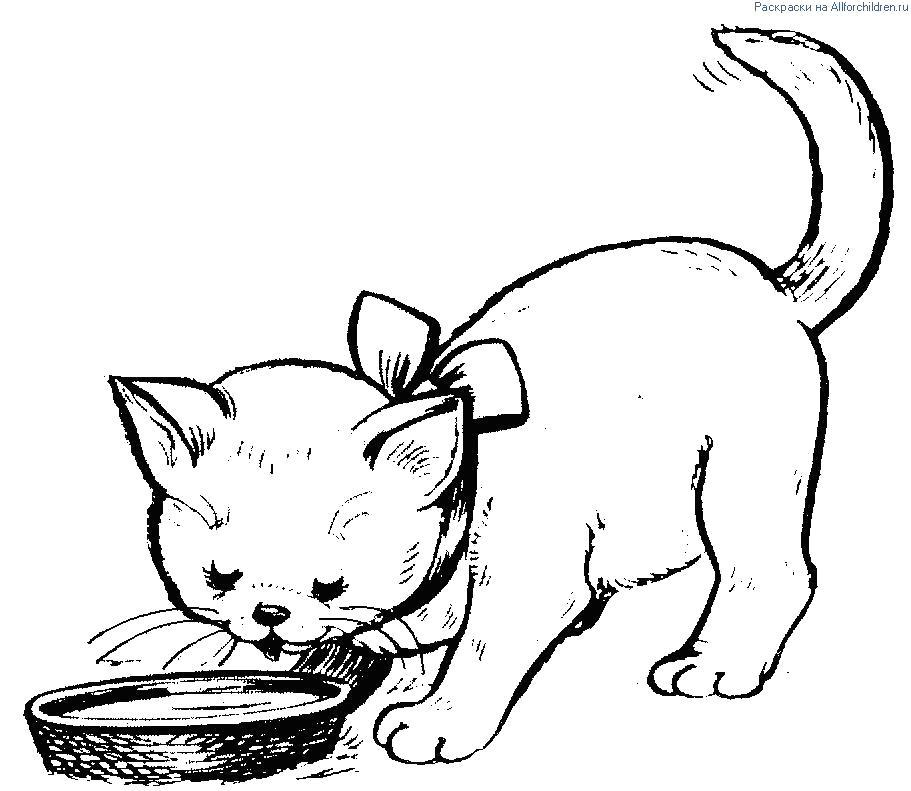 Раскраска  Котята. Скачать кошка, Котенок.  Распечатать Домашние животные