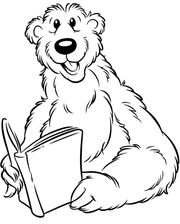 Раскраска Медведь. Скачать Герои Диснея.  Распечатать Герои Диснея