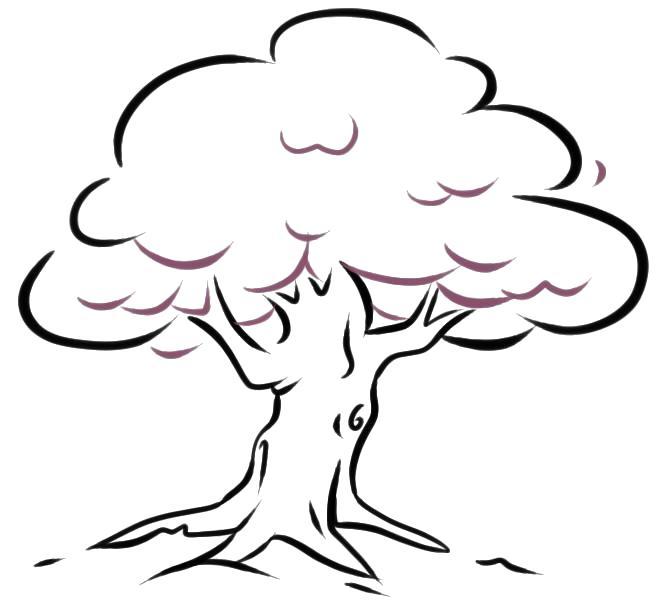 Раскраска как нарисовать дерево. Скачать Как нарисовать.  Распечатать Как нарисовать