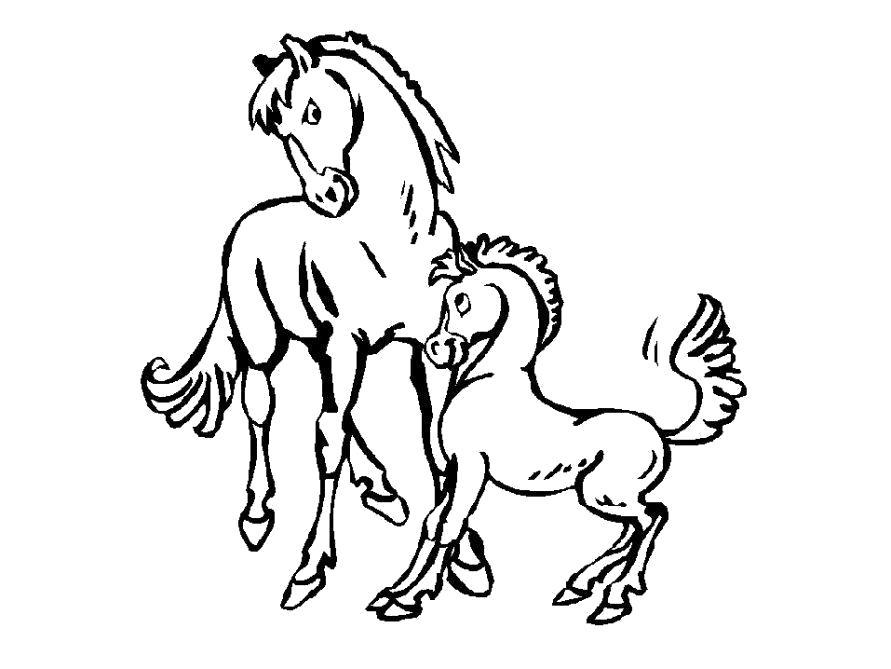 Раскраска  Лошадь и жеребенок. Скачать Лошадь.  Распечатать Домашние животные