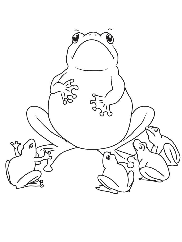 Раскраска Смешные . Скачать лягушка.  Распечатать лягушка