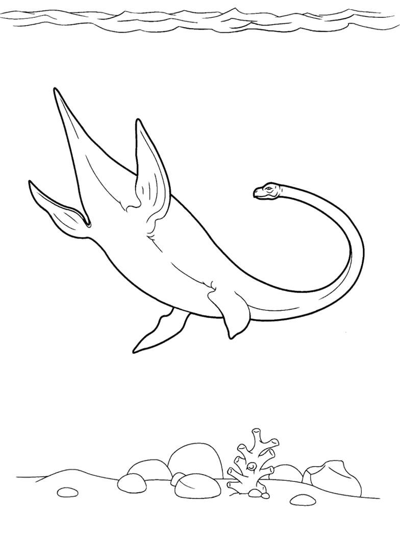 Раскраска  динозавр плавает в море. Скачать динозавр.  Распечатать динозавр