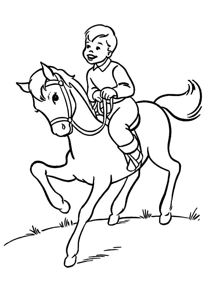 Раскраска  мальчик на лошади. Скачать Лошади.  Распечатать Лошади