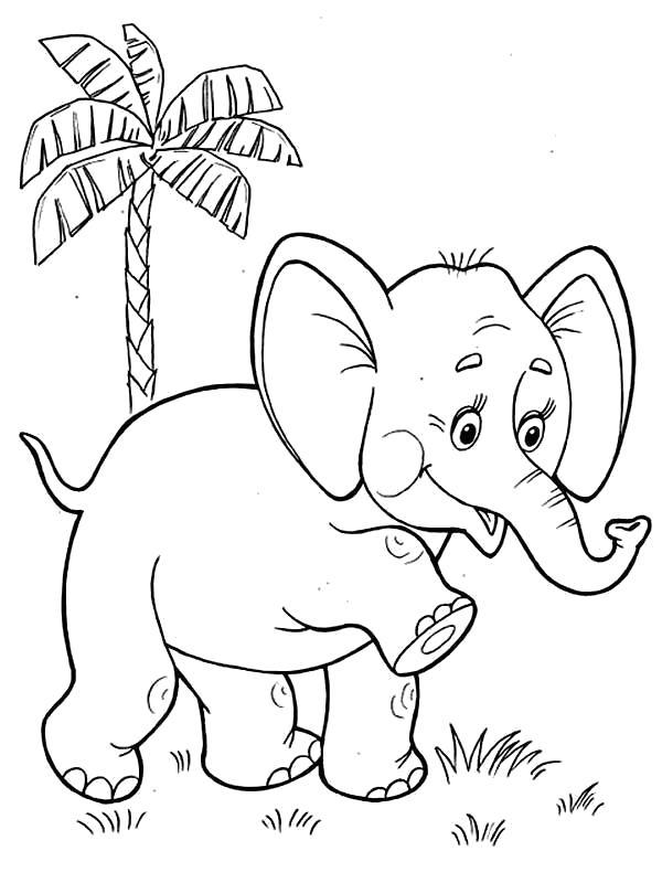 Раскраска первые шаги слоненка. Скачать слон.  Распечатать Дикие животные