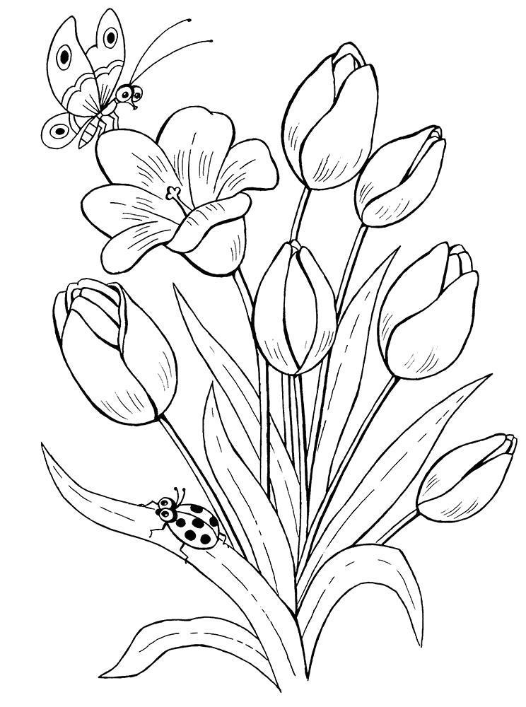 Название: Раскраска Тюльпанчики. Категория: Цветы. Теги: Цветы.