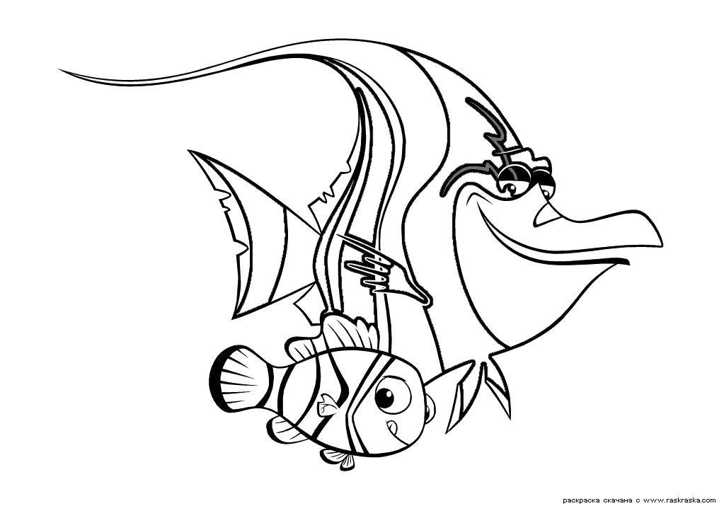 Раскраска  Шрам и Немо.  Картинки детские для раскрашивания ребенком, сайт детский с расскрасками из мультфильмов, рисунки для детей из мультиков. Скачать немо.  Распечатать немо