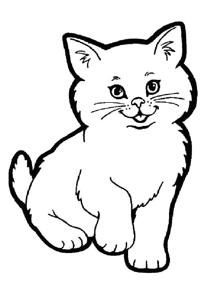 Раскраска  котята для детей. Скачать кошка.  Распечатать Домашние животные