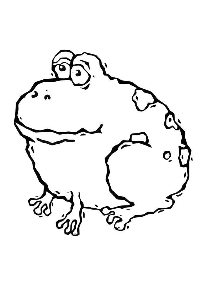 Раскраска  Смешная лягушка. Скачать лягушка.  Распечатать лягушка