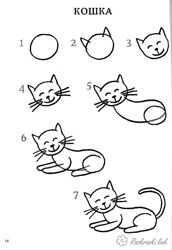 Раскраска  Как нарисовать как нарисовать кошку поэтапно. Скачать как нарисовать.  Распечатать Учимся рисовать