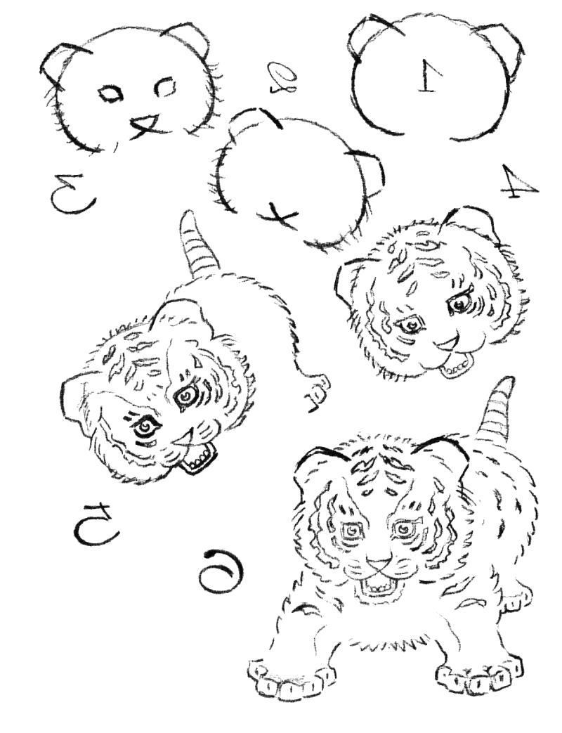 Раскраска Изучаем вместе - Рисование для вас - Учимся рисовать тигра... Скачать Учимся рисовать.  Распечатать Учимся рисовать