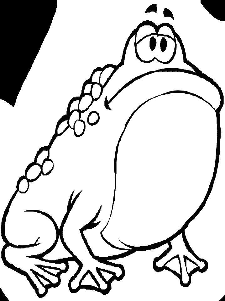 Раскраска  Грустная жаба. Скачать .  Распечатать