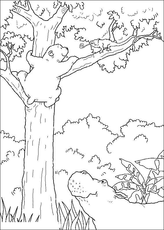 Раскраска Дерево и кормит, и спасает. Скачать дерево.  Распечатать растения