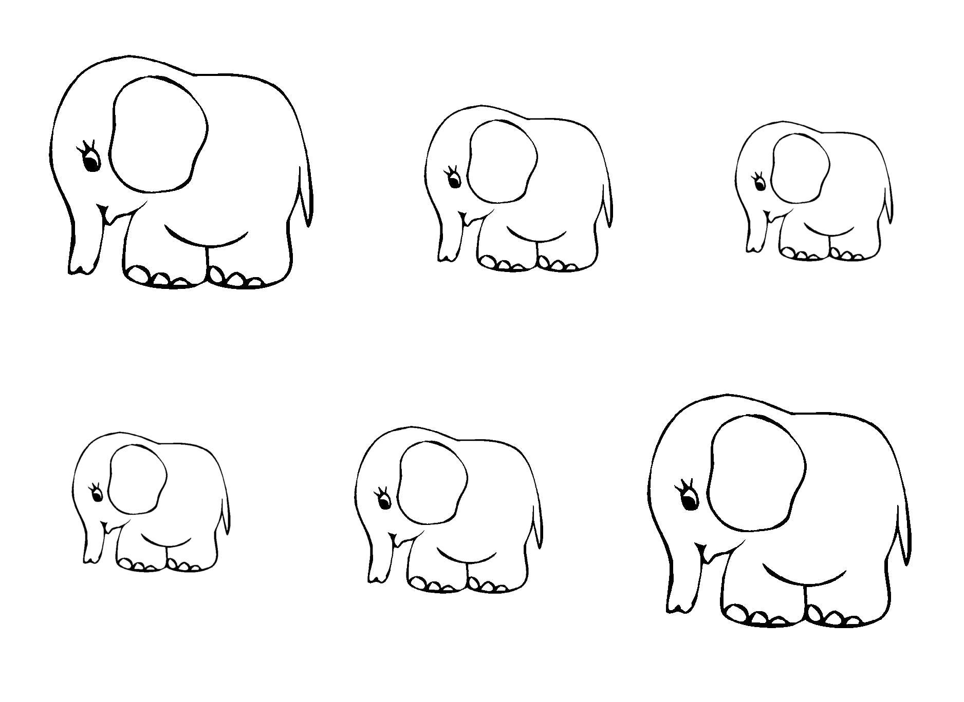 Раскраска много слонов. Скачать слон.  Распечатать слон