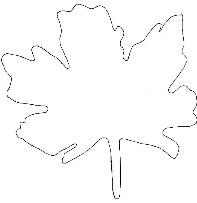 Раскраска Поделки. Осенние маски. Осенние поделки своими руками из картона. Осенние листья шаблон. Кленовый лист 290x300 Детские аксессуары к  осеннему карнавальному костюму. Осенний лист из бумаги. Делаем вместе с детьми из бумаги своими руками осенний лист клена. Кленовый лист к детскому костюмированному утреннику.. Скачать лист.  Распечатать растения