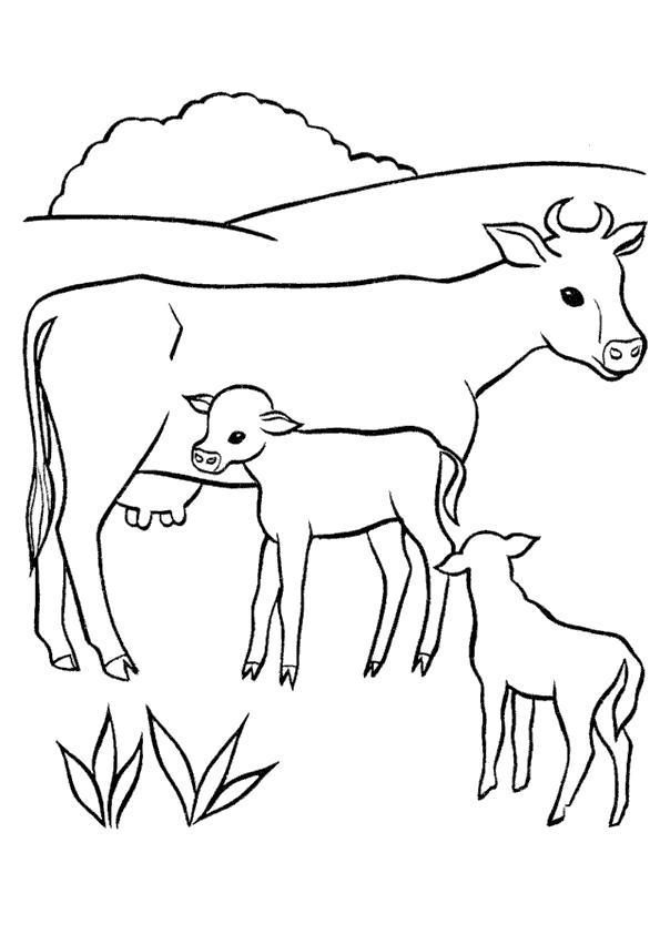 Раскраска В деревне у бабушки. . Корова с телятами. Скачать Корова, Теленок.  Распечатать Домашние животные