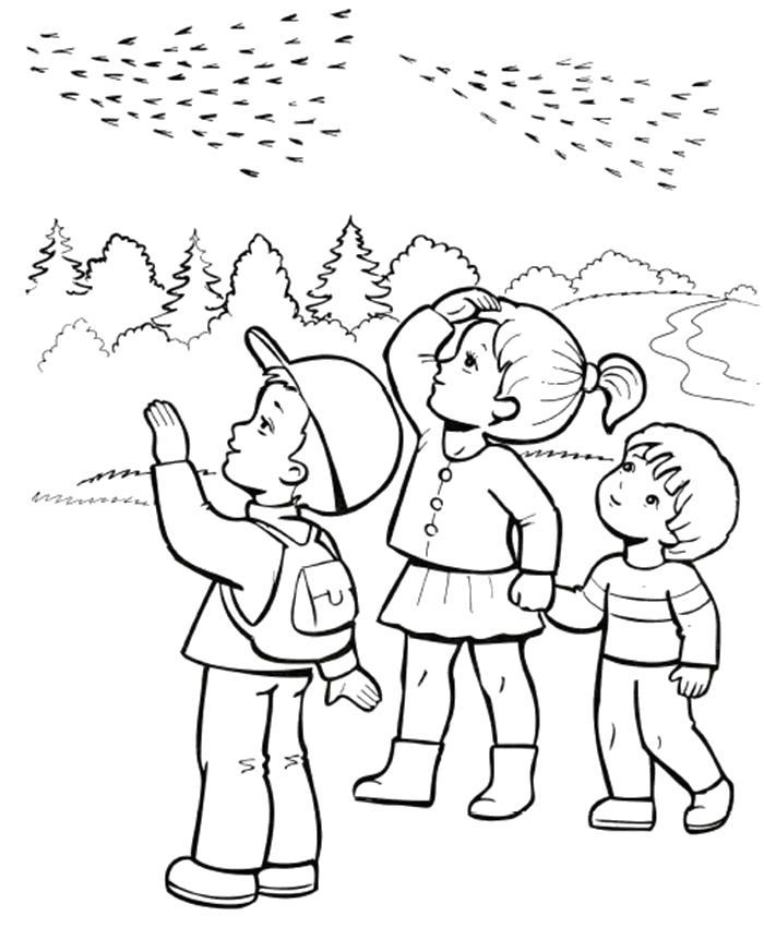 Раскраска Перелётные птицы. Скачать .  Распечатать