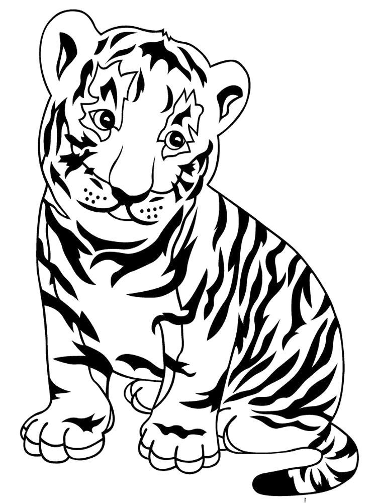 Раскраска Зоопарк Скачать или распечатать раскраску, тигренок  распечатать. Скачать Тигр.  Распечатать Дикие животные