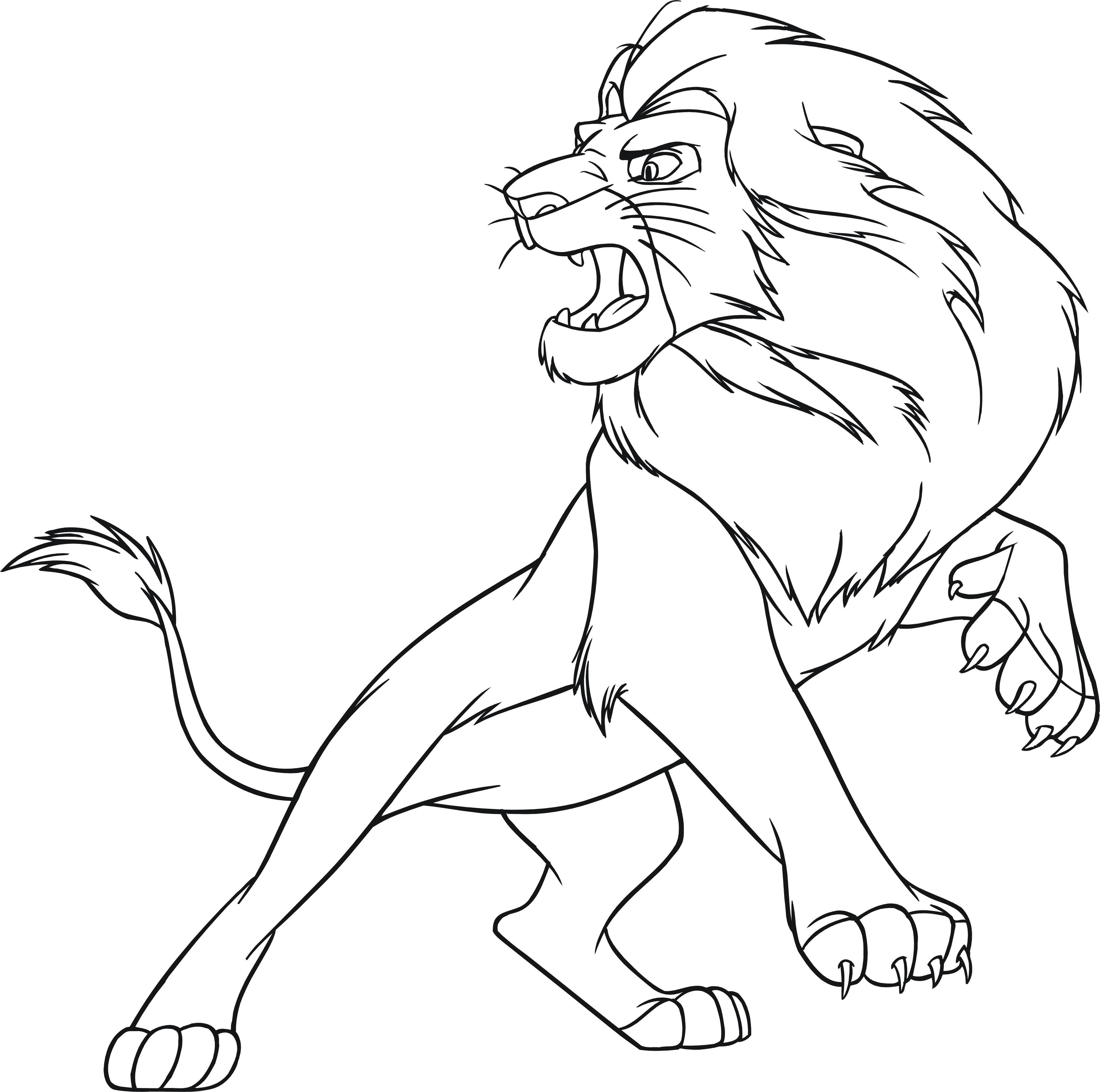 Раскраска  дикие злой лев, рычит, природа, животные, хищник. Скачать Лев.  Распечатать Лев