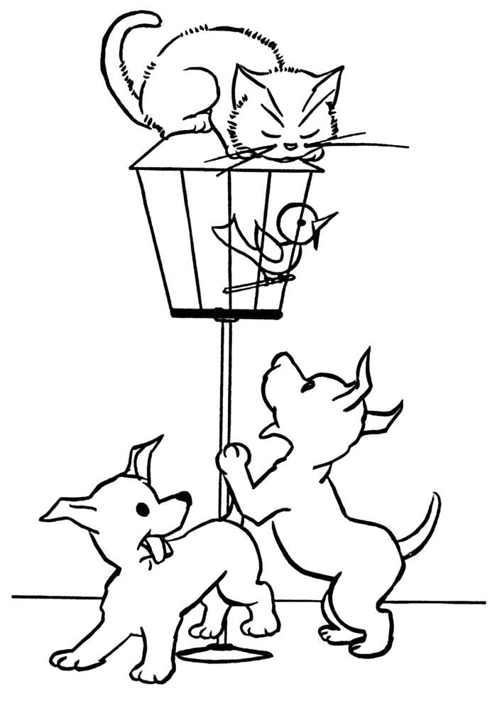 Раскраска кошки и собаки. Скачать Щенок, Котенок.  Распечатать Домашние животные