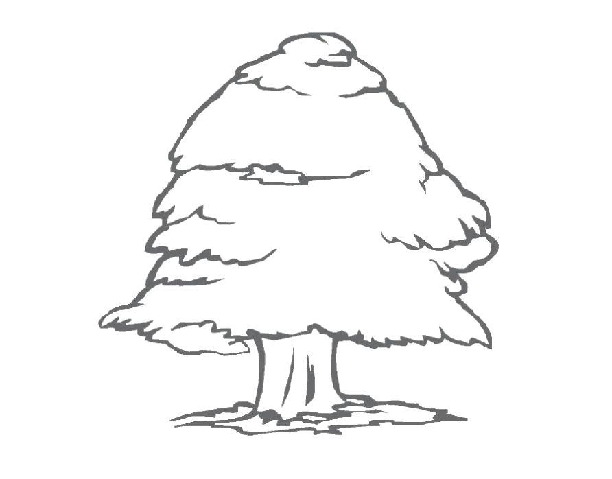 Название: Раскраска Раскраска дерево ребенку. Категория: растения. Теги: дерево.