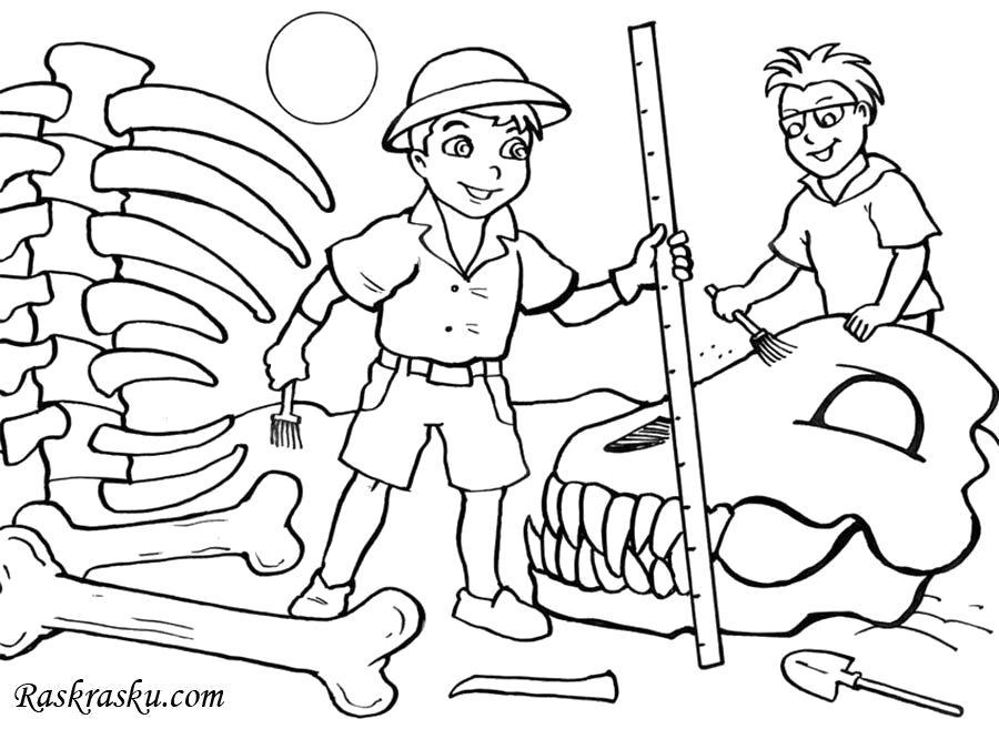 Раскраска Археолог, профессия археолог, мальчики нашли динозавра. Скачать .  Распечатать