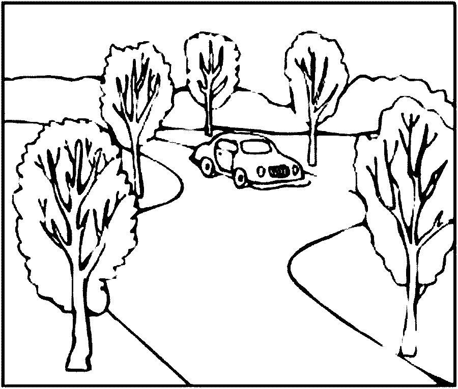 Раскраска Деревья вдоль дороги. Скачать деревья.  Распечатать деревья