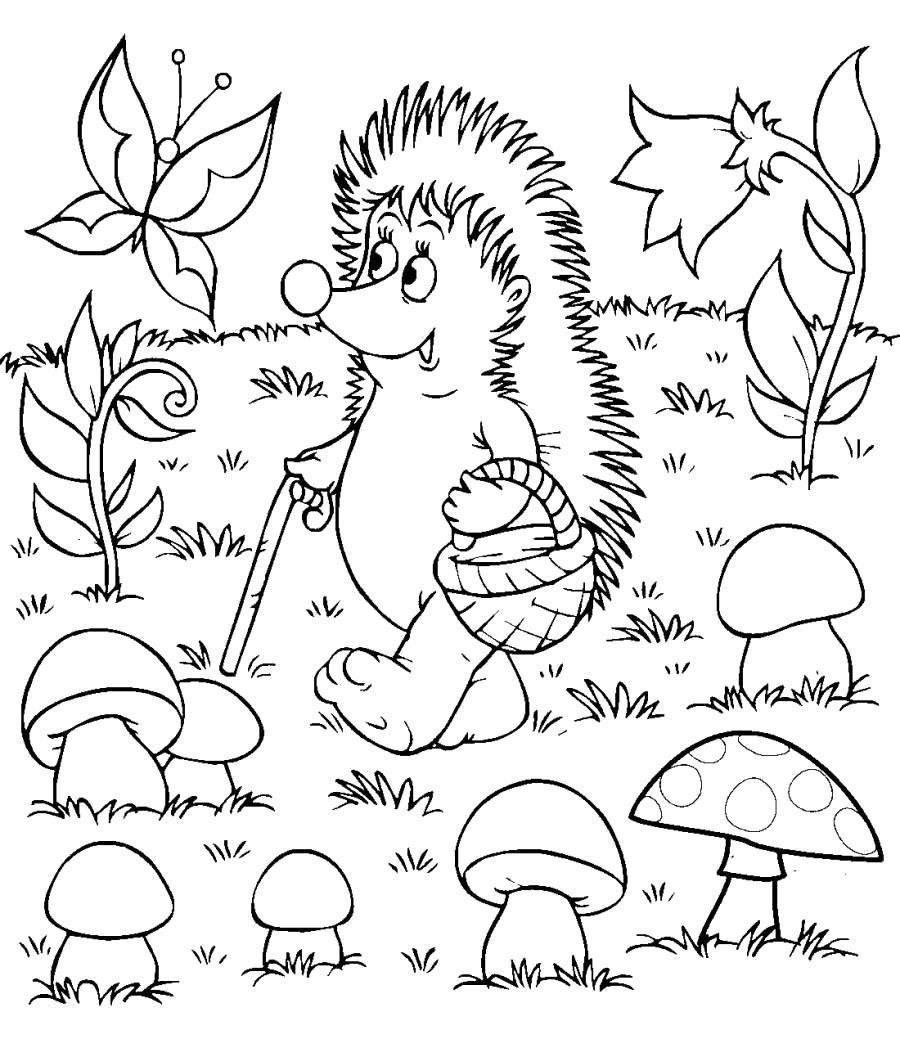 Раскраска Ежик идет за грибами. Скачать .  Распечатать