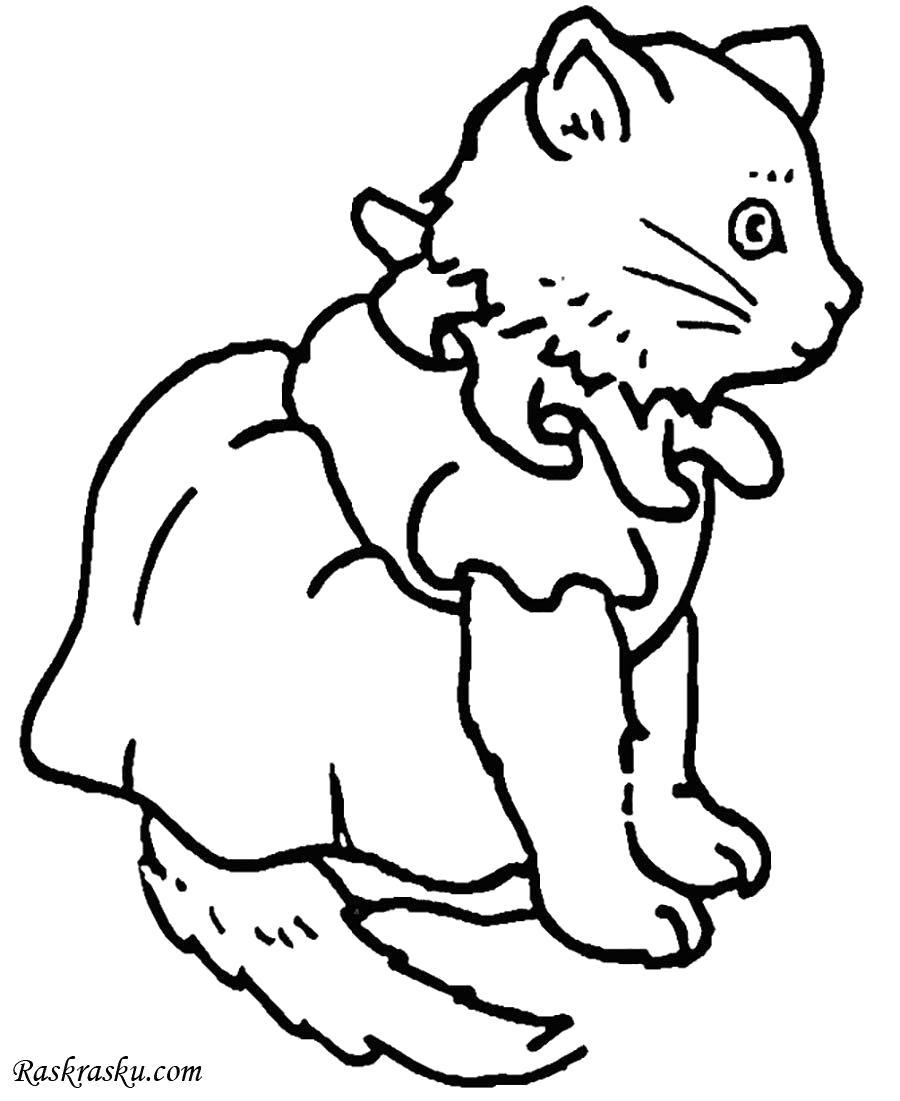Раскраска Добрая кошечка. Скачать кошка.  Распечатать кошка