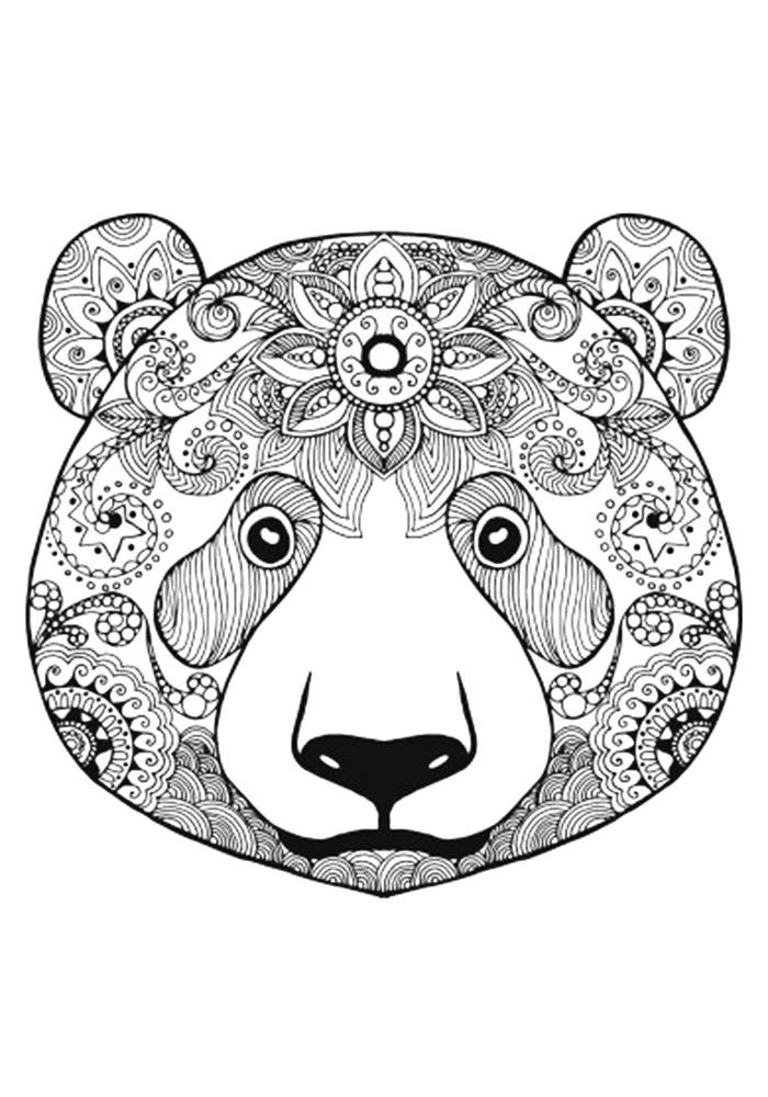 Раскраска  антистресс медведь. Скачать медведь.  Распечатать Дикие животные