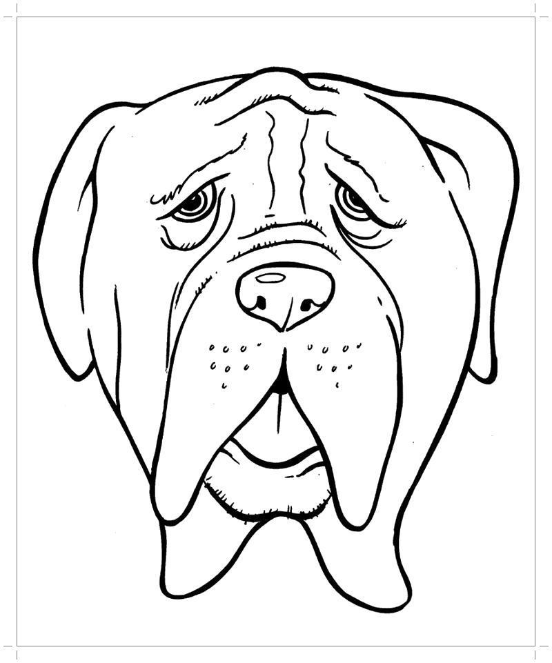 Раскраска Морда собаки . Скачать Собаки.  Распечатать Собаки