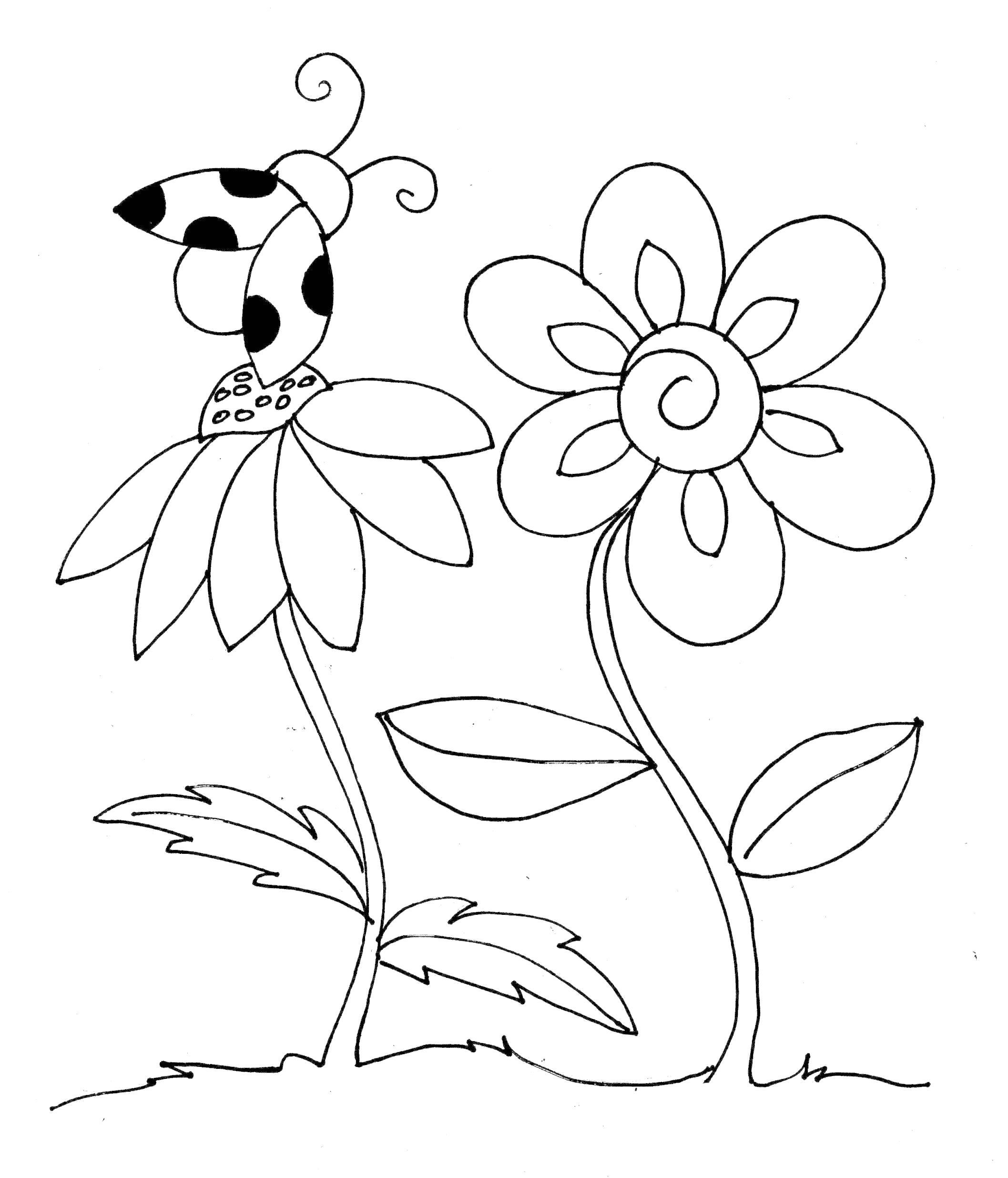 Раскраска Божья коровка над цветами. Скачать цветы.  Распечатать цветы